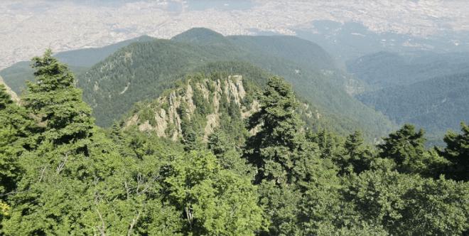 Çobankaya | Bursa Kamp