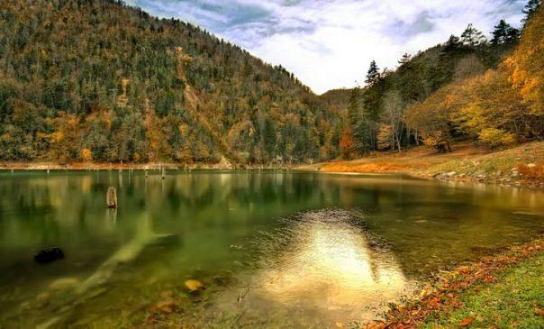 Bolu Sülüklü Göl Hakkında Bilgiler | Kamp
