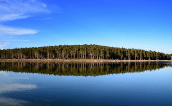 Topuk Göleti Yaylası Kamp Alanı | Düzce