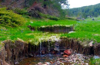 Eğriova Yaylası Göleti