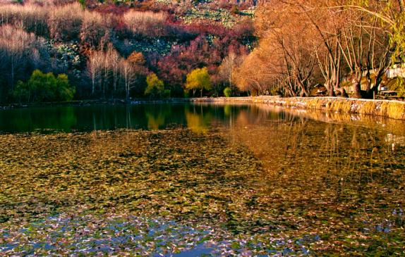 Karagöl Tabiat Parkı Hakkında Bilgi | Ankara